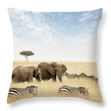 Elephants And Zebras In The Masai Mara Throw Pillow
