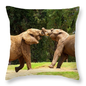 Elephants At Play 2 Throw Pillow