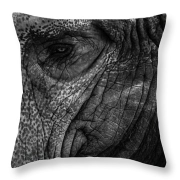 Elephants Eye Throw Pillow