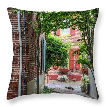 Calico Alley  Throw Pillow by David Zanzinger