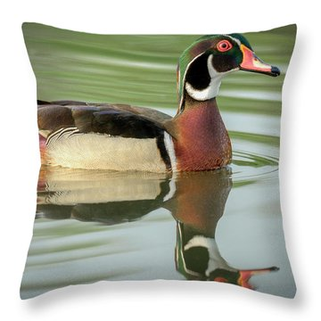 Eligible Bachelor Throw Pillow