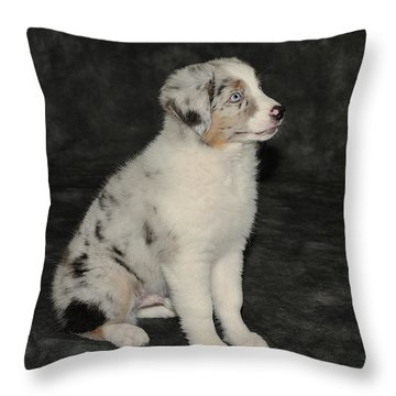 Elijah Blue 2 Throw Pillow