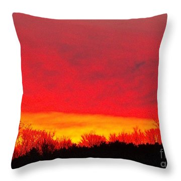 Elijahs Host Throw Pillow