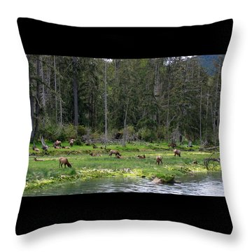 Elk Along The River Throw Pillow