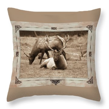 Throw Pillow featuring the photograph Elk by Athala Carole Bruckner