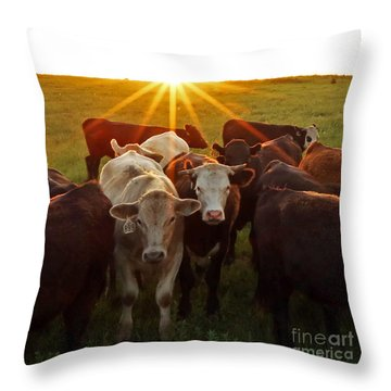 Elk County Herd Throw Pillow