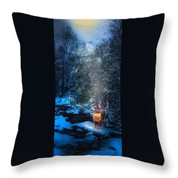 Elk Creek Throw Pillow