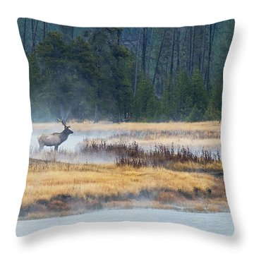 Elk Crossing Throw Pillow