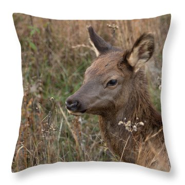 Elk Fawn Throw Pillow