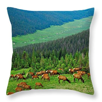 Elk Highlands Throw Pillow