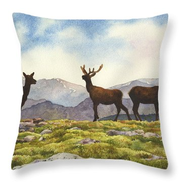 Elk In The Evening Throw Pillow by Anne Gifford