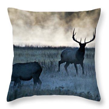 Elk In The Mist Throw Pillow