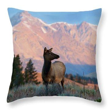 Elk Majesty Throw Pillow
