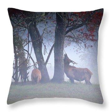 Elk Neck Scratch Throw Pillow by Lamarre Labadie
