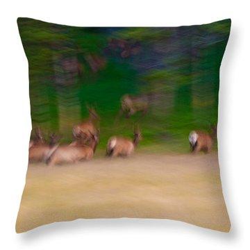 Elk On The Run Throw Pillow