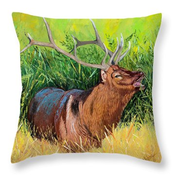 Elk Original Oil Painting On 24x24x1 Inch Gallery Canvas Throw Pillow