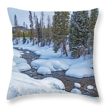 Elk River Throw Pillow