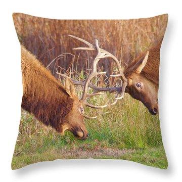 Elk Tussle Too Throw Pillow