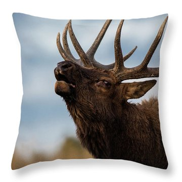 Elk's Screem Throw Pillow by Edgars Erglis