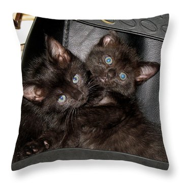 Ellen And Elvira Throw Pillow by Kenneth Albin