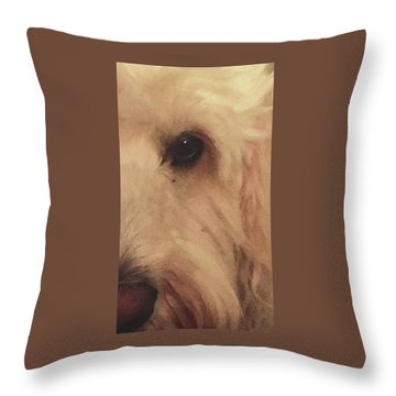 Elleye Throw Pillow