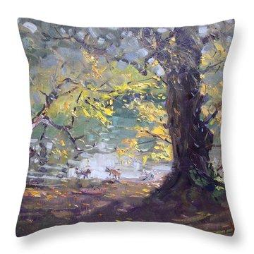 Ellicott Creek Island Park Throw Pillow