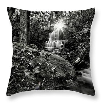 Elora Falls In Black And White Throw Pillow