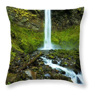 Elowah's Elegance Throw Pillow by Chad Dutson