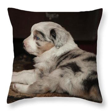 Elwood Throw Pillow
