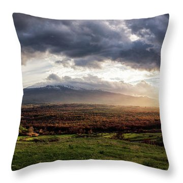 Elysium Throw Pillow