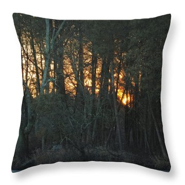 Embers Of The Waking Sun Throw Pillow