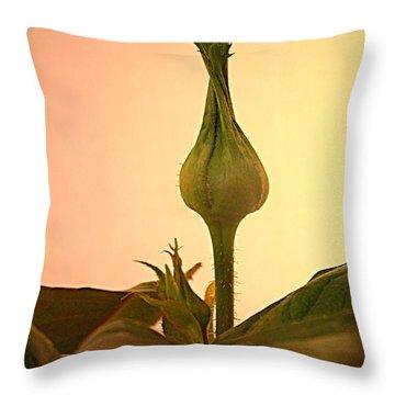 Embrace A Rose Bud Close Up Throw Pillow