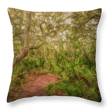 Throw Pillow featuring the photograph Embrace The Journey by John M Bailey