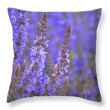 Throw Pillow featuring the photograph Embrace by Traci Cottingham