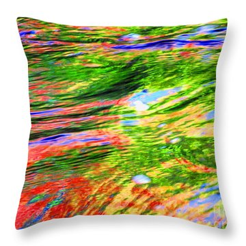 Embracing Change Throw Pillow