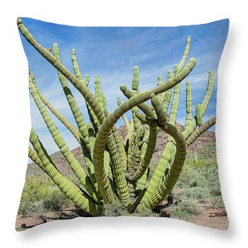 Embracing The Cristate Throw Pillow