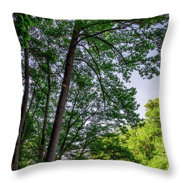 Emerald Afternoon Throw Pillow