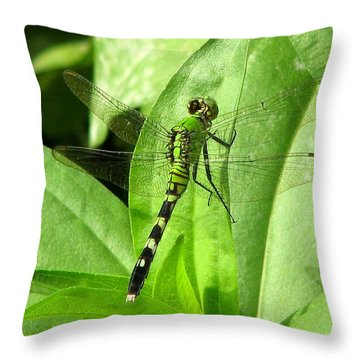 Throw Pillow featuring the photograph Emerald Dragonfly by David Dunham