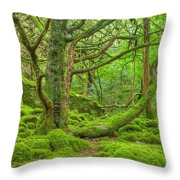 Emerald Forest Throw Pillow by Nicolas Raymond