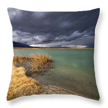 Emerald Green Storm Throw Pillow