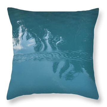 Emerald Lake Glacier Waters Throw Pillow by Angela A Stanton