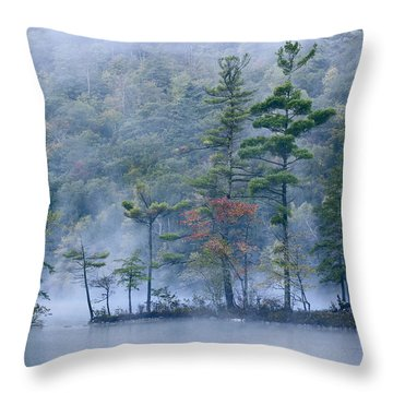 Throw Pillow featuring the photograph Emerald Lake In Fog Emerald Lake State by Tim Fitzharris