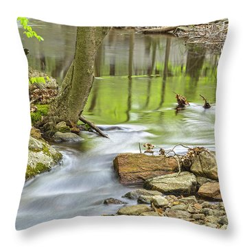Emerald Liquid Glass Throw Pillow by Angelo Marcialis