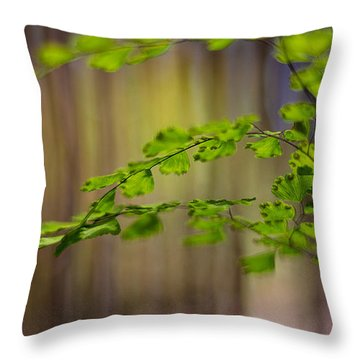 Throw Pillow featuring the photograph Emerald by Tim Nichols