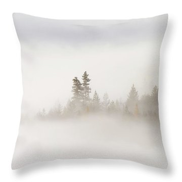 Emergence Throw Pillow by Mike  Dawson