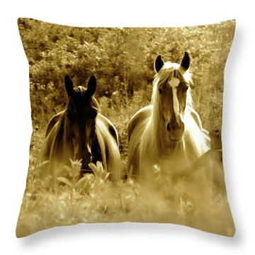 Emerging From The Farm Throw Pillow