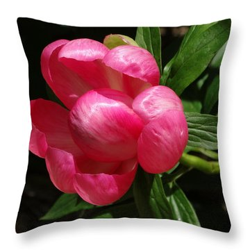 Emerging Peony Bloom Throw Pillow