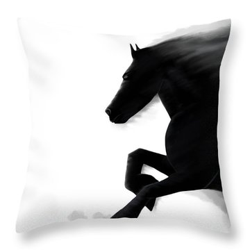 Andrew Jackson Throw Pillows
