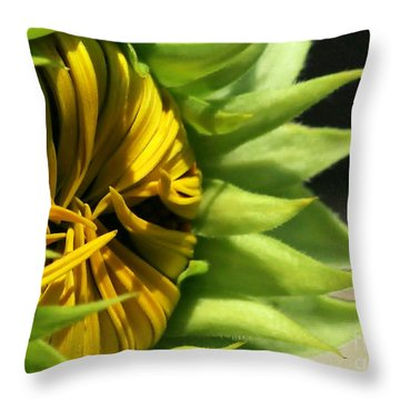 Emerging Sunflower Throw Pillow by Sabrina L Ryan