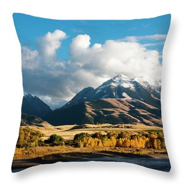A Touch Of Paradise Throw Pillow
